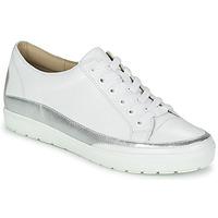 Schoenen Dames Lage sneakers Caprice BUSCETI Wit / Zilver