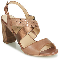 Schoenen Dames Sandalen / Open schoenen Caprice BOLAO Bruin