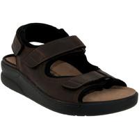 Schoenen Heren Sandalen / Open schoenen Mobils By Mephisto VALDEN Bruin leer
