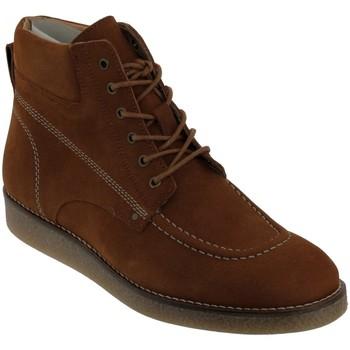 Schoenen Dames Laarzen Kickers Zalpille Nubuck bruin