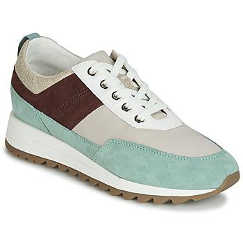 Schoenen Dames Lage sneakers Geox D TABELYA Beige / Bruin / Groen