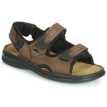 Schoenen Heren Sandalen / Open schoenen Josef Seibel FRANKLIN Bruin