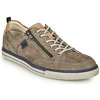 Schoenen Heren Lage sneakers Fluchos QUEBEC Grijs