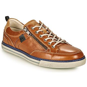 Schoenen Heren Lage sneakers Fluchos QUEBEC Bruin