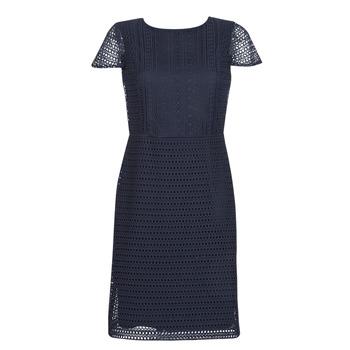 Textiel Dames Korte jurken Lauren Ralph Lauren NAVY SHORT SLEEVE DAY DRESS Marine