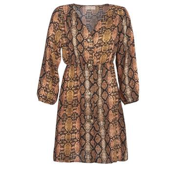 Textiel Dames Korte jurken Moony Mood KOUJUK Multi
