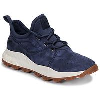 Schoenen Heren Lage sneakers Timberland BROOKLYN LACE OXFORD Blauw