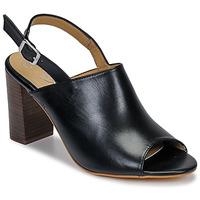 Schoenen Dames Sandalen / Open schoenen Betty London JIKOTEGE Zwart