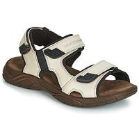Schoenen Heren Sandalen / Open schoenen André MIAMI Beige