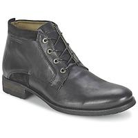 Schoenen Heren Laarzen Redskins FRICOT Zwart