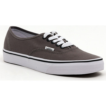 Schoenen Heren Lage sneakers Vans AUTHENTIC PEWTER_BLACK Multicolore
