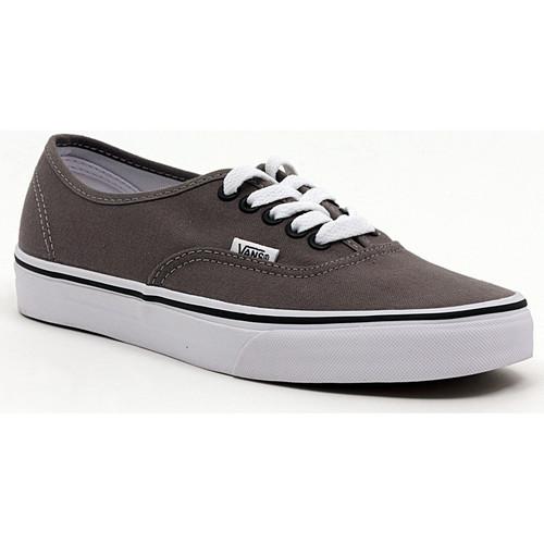 Schoenen Heren Lage sneakers Vans AUTHENTIC PEWTER_BLACK Multicolore