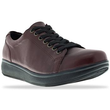 Schoenen Dames Lage sneakers Joya Sonja II Amarone 534