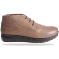 Schoenen Dames Laarzen Joya London Walnut Air 534