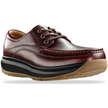 Schoenen Heren Derby Joya Porto Dark Brown 534