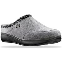 Schoenen Dames Klompen Joya Zermatt Grey 534