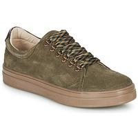 Schoenen Meisjes Lage sneakers GBB OMAZETTE Groen