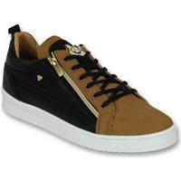 Schoenen Heren Lage sneakers Cash Money Heren Schoenen - Heren Sneaker Bee Camel Black  Gold - CMS97 28