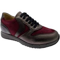 Schoenen Dames Lage sneakers Calzaturificio Loren LOC3818bo tortora