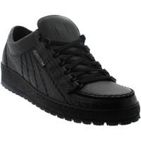 Schoenen Heren Lage sneakers Mephisto RAINBOW Zwart leer