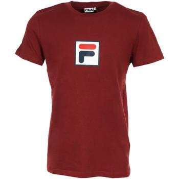 Textiel Heren T-shirts korte mouwen Fila Evan 2.0 Tee SS Rood