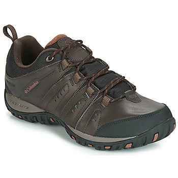 Schoenen Heren Allround Columbia WOODBURN II WATERPROOF Bruin
