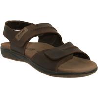 Schoenen Heren Sandalen / Open schoenen Mephisto SAGUN Bruin leer