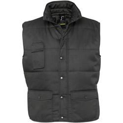 Textiel Heren Dons gevoerde jassen Sols EQUINOX PRO WORKS Gris