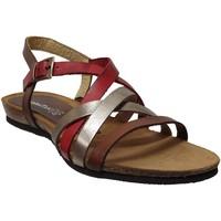 Schoenen Dames Sandalen / Open schoenen Xapatan 5466 Rood / bruin