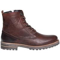 Schoenen Heren Laarzen Gaastra Footwear Gaastra schoenen . Cape High Cognac . 1 BROWN 3011 . 41 - 46 . Bruin, Cognac/Camel