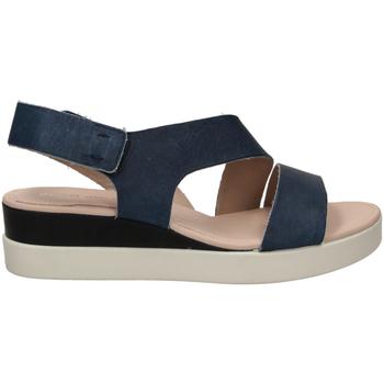 Schoenen Dames Sandalen / Open schoenen Ecco TOUCH SANDAL blumo-blu