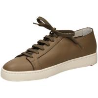 Schoenen Heren Lage sneakers Santoni TENNIS 6F iam61-taupe