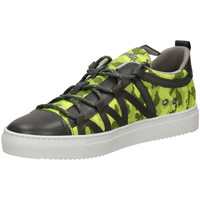 Schoenen Heren Lage sneakers Barracuda  lime-lime