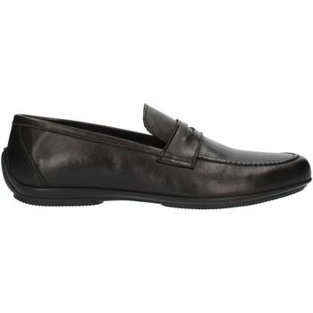 Schoenen Heren Mocassins Nicol Sadler M01 Black
