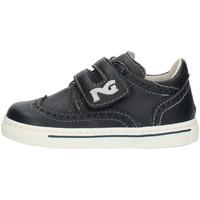 Schoenen Jongens Lage sneakers Nero Giardini P724120M Blue