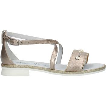 Schoenen Meisjes Sandalen / Open schoenen Nero Giardini P830480F Nut