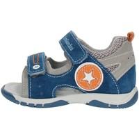 Schoenen Jongens Sandalen / Open schoenen Nero Giardini P823141M Gray blue and orange