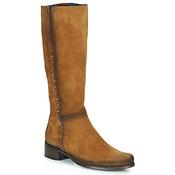 Schoenen Dames Hoge laarzen Dorking CRUSCA Bruin