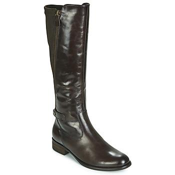 Schoenen Dames Hoge laarzen Gabor 3164228 Bruin
