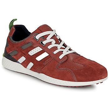 Schoenen Heren Lage sneakers Geox U SNAKE.2 Bruin