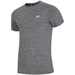 Textiel Heren T-shirts korte mouwen 4F H4L19 TSMF002