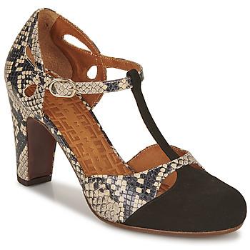 Schoenen Dames pumps Chie Mihara KUNA Zwart / Beige