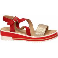 Schoenen Dames Sandalen / Open schoenen Igi&co DPY 31917 rosso