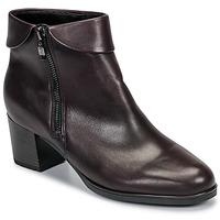 Schoenen Dames Enkellaarzen Ara 16913-67 Bruin