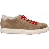Schoenen Heren Lage sneakers Igi&co USH 31327 tortora