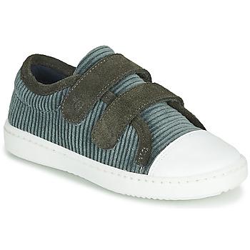 Schoenen Kinderen Lage sneakers Citrouille et Compagnie LILINO Grijs