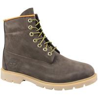 Schoenen Heren Laarzen Timberland 6 Inch  6400R
