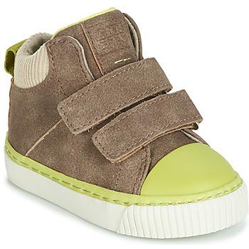 Schoenen Jongens Hoge sneakers Gioseppo ERDING Taupe
