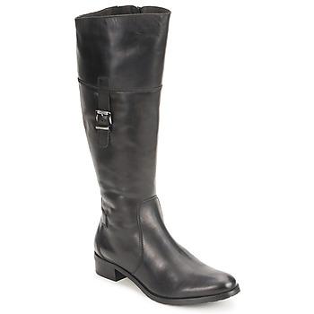 Schoenen Dames Hoge laarzen Fidji ERTUNI Zwart