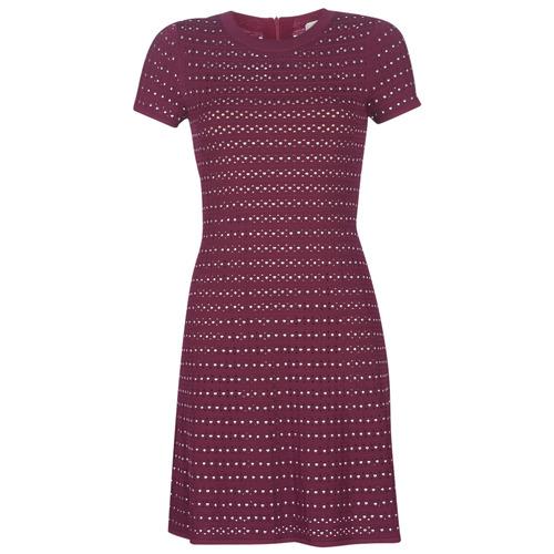 Textiel Dames Korte jurken MICHAEL Michael Kors EMBELL FLARE MINI DRS Bordeau